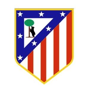 voetbalreizen atletico madrid